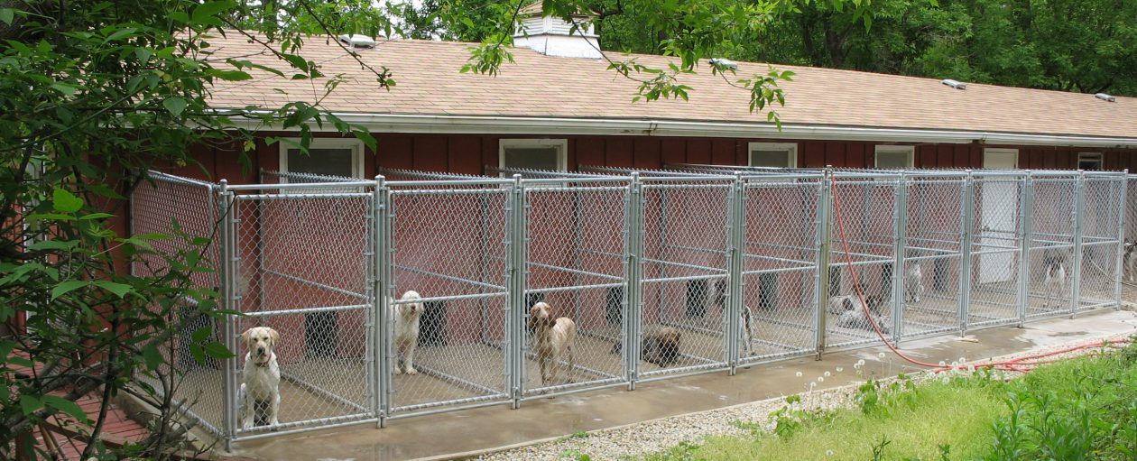 green valley kennels we re glad you re here